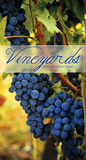Vineyards - 2013 Pocket Planner Calendar Calendars