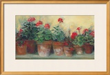 Kathleen&#39;s Geraniums Posters by Carol Rowan