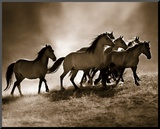 Wild Horses Mounted Print by Lisa Dearing