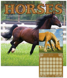 Horses - 2013 Calendar Calendars