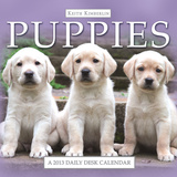 Keith Kimberlin Puppies - 2013 Daily Desk Calendar Calendar Calendars