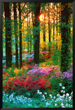 Flower Forest Poster