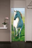 White Horse Door Wallpaper Mural Wallpaper Mural