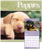 Puppies - 2013 Calendar Calendars