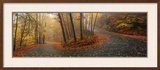 Winding Road Through Mountainside in Autumn, Monadnock Mountain, New Hampshire, USA Framed Photographic Print by  Panoramic Images