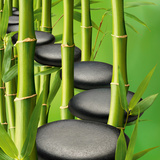 Stones &amp; Bamboo Path Art