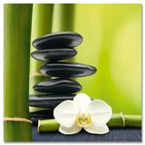 Bamboos & Stones Schilderijen