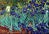 Blå iris, Saint-Remy, ca. 1889|Irises, Saint-Remy, c.1889 Montert trykk av Vincent van Gogh