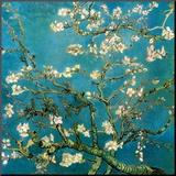Mandelgrenar i blom, San Remy, ca 1890 Print på trä av Vincent van Gogh