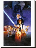 Star Wars-Return Of The Jedi Leinwand