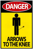 Danger - Arrows To The Knee Video Game Poster Masterprint