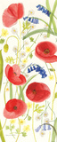 Meadow Poppies II Prints by Rebecca Bradley