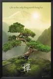 Zen-Mountain Posters