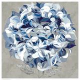 Elegant Hydrangea I Posters by Sally Scaffardi