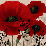 Red Poppies II Affiche par Linda Wood