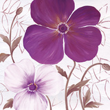 Plum Elegance I Prints by Sauber 