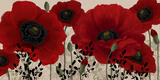 Red Poppies Prints by Linda Wood
