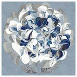 Elegant Hydrangea II Prints by Sally Scaffardi