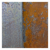Rusty Panel I Prints by Jean-François Dupuis