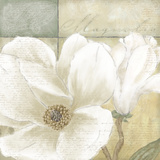 White Magnolia II Print by Linda Wood