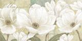 Magnolie Kunstdrucke von Linda Wood
