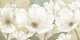 Magnolia Prints by Linda Wood