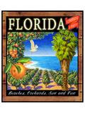 Fruit Crate Oranges I Giclée-Premiumdruck von Chris Vest