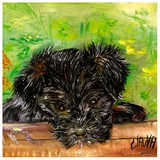 Chien Noir Prints by  Clauva