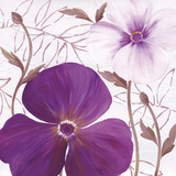 Plum Elegance II Poster by  Sauber
