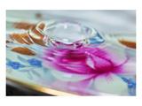 Connie Publicover - Floral Splash Speciální digitálně vytištěná reprodukce