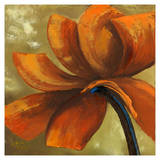 Orange Flower I Prints by Nathalie Poulin