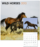 Wild Horses - 2013 Wall Calendar Calendars