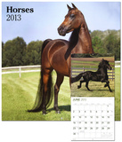 Horses - 2013 Wall Calendar Calendars