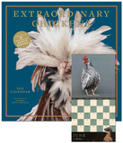 Extraordinary Chickens - 2013 Wall Calendar Calendars