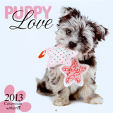 Puppy Love by Myrna - 2013 Wall Calendar Calendars