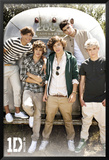 One Direction- Airstream Print