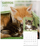 Gatitos/Kittens - 2013 Wall Calendar Calendars