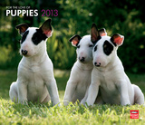 For The Love Of Puppies - 2013 Deluxe Wall Calendar Calendars