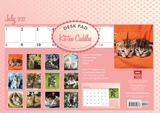 Kitten Cuddles - 2013 Academic Desk Pad Calendars