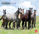 Horses, For The Love Of - 2013 Deluxe Wall Calendar Calendars