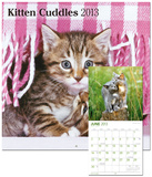 Kitten Cuddles - 2013 Wall Calendar Calendars