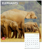 Elephants - 2013 Wall Calendar Calendars