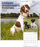 German Shorthaired Pointers - 2013 (Intl) Wall Calendar Calendars