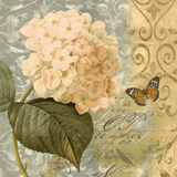 Flowers Butterfly I Affiches par Emma Hill
