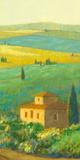 Tuscan Landscape II Prints by Hazel Barker
