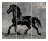 Caballus III Prints by Mark Chandon