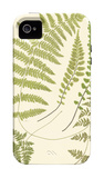 Ferns with Platemark II iPhone 4/4S Case