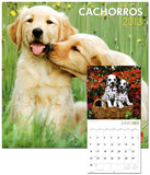 Cachorros/Puppies - 2013 Wall Calendar Calendars