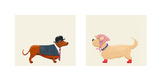 City Dogs Prints by Kate Mawdsley