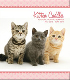 Kitten Cuddles - 2013 Academic Soft Cover Personal Planner Calendars